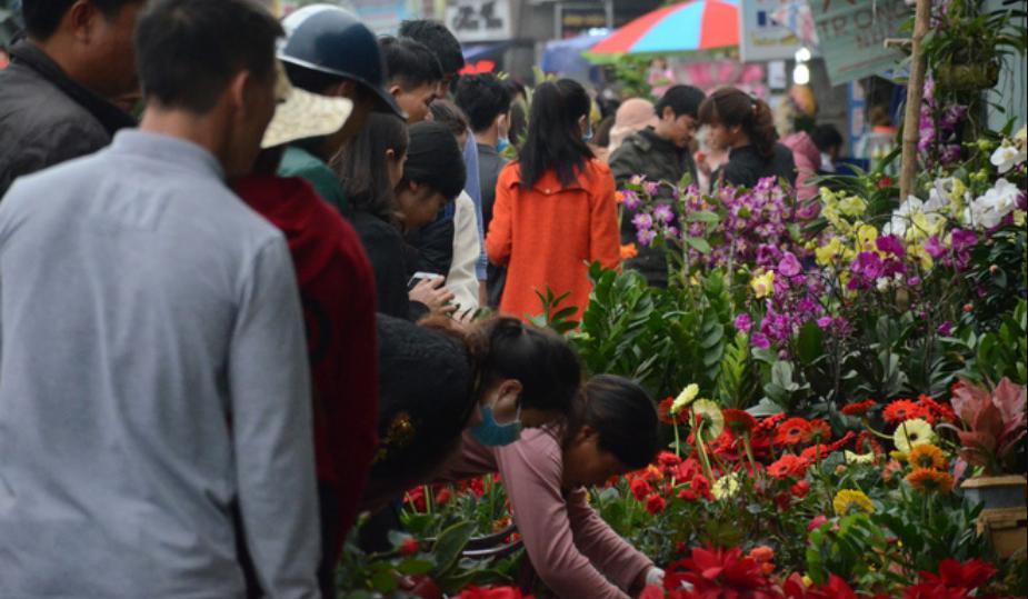 du khách mua hoa chợ Viềng